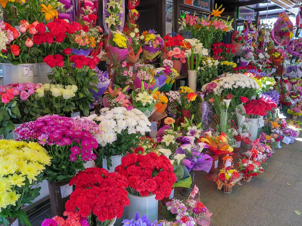 Bulgariska blommor med  kraftfulla färger