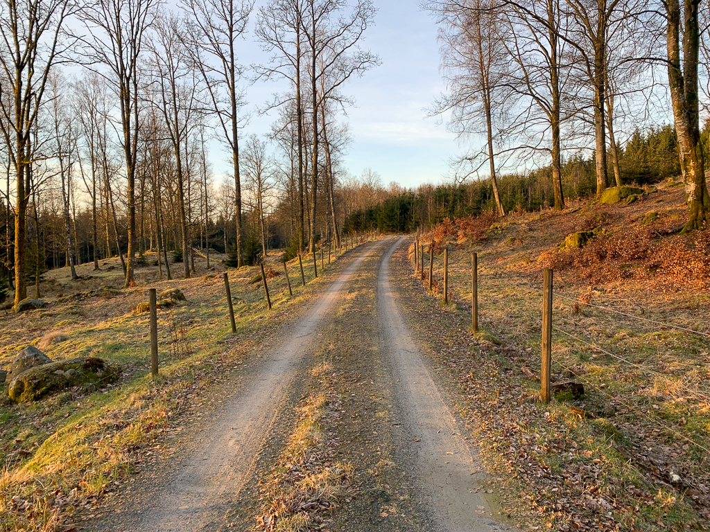 Promenad på grusväg